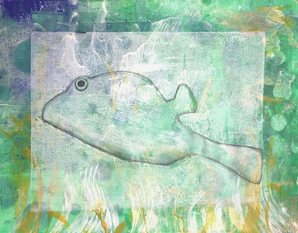 trunk fish